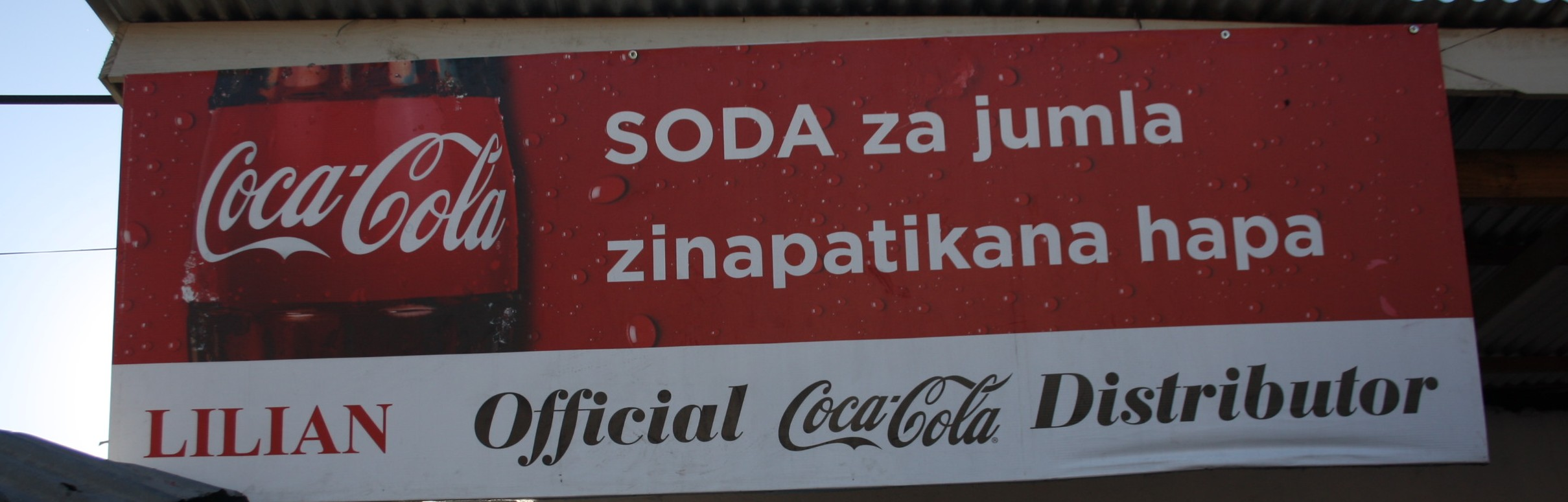 Tanzanian Trip - Part One - Coca Cola's Intiatives - Harassed but
